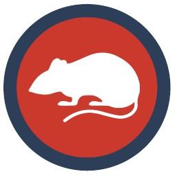 Animal Test User.jpg