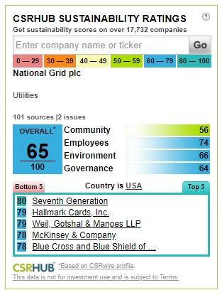 CSRHub Sustainability Ratings Widget.jpg